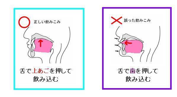 の 位置 舌 正しい 舌トレーニングのすすめ!舌を鍛える効果と正しいやり方